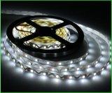 Luz de tira de neón flexible al aire libre del LED para la decoración del edificio