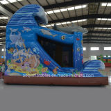 Équipement de parc d'attractions Toy Gift Inflatable Ocean Park Combo (AQ01581)