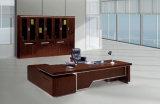 Vector de la oficina (FECA07)