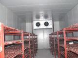 Cámara fría de la refrigeración de la cerveza del jugo/de la leche/almacenes fríos más desapasibles