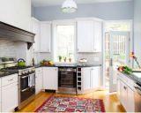 De Amerikaanse Ontwerpen van de Keuken van de Stijl Moderne