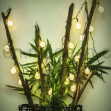 Navidad u otro uso de vacaciones Fairy al aire libre decorativa bombilla LED de iluminación