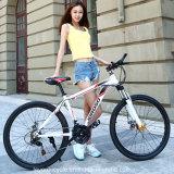 Bike горы MTB углерода хорошего качества (MTB-80)
