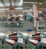 販売は提供されたカラー選別機機械を整備する