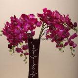 8 цветков искусственних цветков орхидеи Phalaenopsis оптовой продажи фабрики головок Silk декоративных
