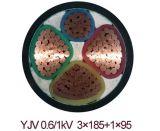 0.6/1kv XLPE à un noyau a isolé le câble d'alimentation de cuivre engainé par PVC