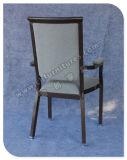 Горячий подлокотник сбывания обедая мебель стулов (YC-E65-06)