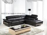 Sofá casero del cuero genuino de los muebles (SBL-9127)