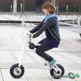 Patín eléctrico de la rueda de 12 pulgadas para la venta