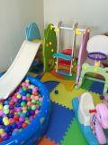 スライドの振動Baketball (HBS17028A)との2017高品質の屋内赤ん坊小さいPlaylang