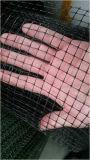 Verdrängtes Antivogel-Netz/verdrängtes Netz Bop Netz