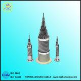 BS, ASTM, RUÍDO, padrão do IEC todo o condutor desencapado encalhado alumínio de AAC para despesas gerais