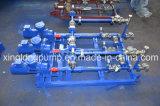 Xinglong steunbalk-Opgezet Systeem van de Enige die Pomp van de Schroef in Olieveld wordt gebruikt