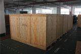 높은 정밀도를 가진 큰 크기 안전 사용 엑스레이 짐 스캐너 10080cm 엑스레이 검열제도