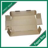Große Farben-gewölbter Verpackungs-Karton-Kasten