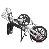 تصميم جديدة يطوي درّاجة مع [فكتوري بريس] ([ن-فب001])