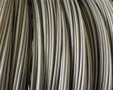 O fio de aço Swch18A de baixo carbono de Chq com fosfato revestiu