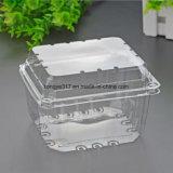 Embalagem plástica transparente da fruta de quivi