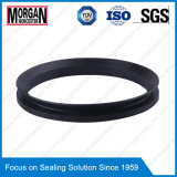 Large Dimension Rubber Va Tipo Eixo Use V-Ring Water Seals