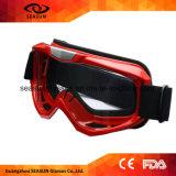 Het Rennen van de Fabrikant van de modieuze het Rennen Beschermende brillen van de Motocross het Professionele Embleem van de Douane van de Beschermende brillen van de Motocross