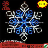Deux couleurs Blue Outdoor White Rope Motif Snowflake Star LED Christmas Light for Decoration