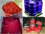 Bruch-Tomatenkonzentrat Brix-28-30% kaltes in der Trommel
