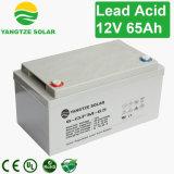 Batteria acida al piombo 12V 65ah dell'UPS sigillata vendita calda