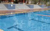 Mosaico de cerámica para los pobres de la natación (FYSC48)