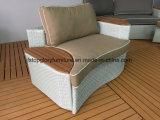 Напольные комплекты софы сада ротанга и Пластмасс-Древесины мебели патио (TG-8131)