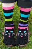 Zehe-Socke des Regenbogen-Farben-Streifen-fünf für Kind-Kleid Cuty