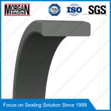 Perfil de Fra / Gp PTFE / Anillo de la guía del pistón del Teflon / anillo de desgaste