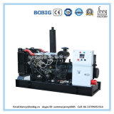 Dieselgenerator 20kVA angeschalten von Yangdong Engine