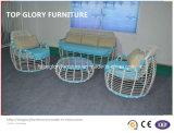 Новые комплекты софы сада ротанга и алюминия конструкции (TG-8003)