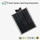 Indicatore luminoso solare Integrated del giardino di nuovo disegno con telecomando (20W)