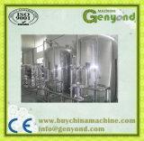 Hecho en planta de tratamiento pura del agua de China