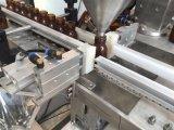 Máquina de rellenar en botella polvo linear automático de la proteína
