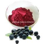 Flavonas naturales del extracto de la baya del 100% Acai el 10%; 4:1, 10:1 con el antioxidante fuerte y aminoácidos