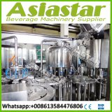 Vollautomatischer kompletter Wasser-Abfüllanlage-Preis