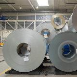 SUS316L de Rollen van het roestvrij staal