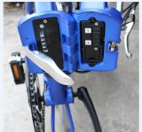 20 polegadas que dobram a dobradura elétrica da bicicleta da bicicleta E