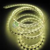 Luz de tira do diodo emissor de luz da decoração 2835 60LEDs/M IP68 5mts da tira