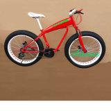 شاطئ طرّاد إطار العجلة سمين 26 بوصة ثلج درّاجة كهربائيّة