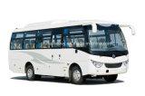 Asientos de Rhd/LHD 27 del coche de pasajero de Dongfeng 140HP/del omnibus