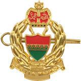 L'oro superiore li ha placcati distintivo militare