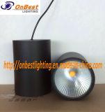 Luz de techo ligera caliente de la venta LED abajo 30W LED en IP65