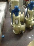 보일러를 위한 플랜지 유형 스테인리스 안전 밸브
