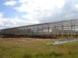 Vorfabrizierte Stahlrahmen-Aufrichtung-Werkstatt/Lager