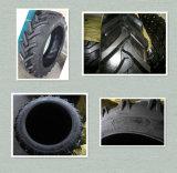 Fabrik-Qualitäts-Vorspannungs-landwirtschaftlicher Reifen des Muster-R-1 chinesische