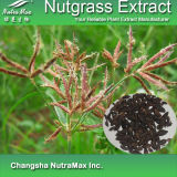 Extrait naturel de Nutgrass de 100% (4 : 1, 10:1, 20:1, 30 : 1)