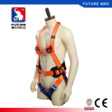Standard del Ce 5 punti del cavo di sicurezza con la doppi sagola della tessitura ed ammortizzatore